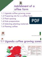 Cafe Africa_Establishment of a coffee farm 1_16 Feb 15