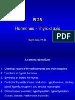 B28 Hormone Thyroid