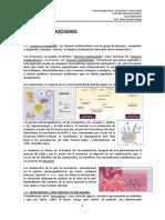 MELANOCITARIOS_18_19