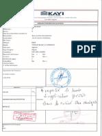 ERSSM-peinture de protection CM.pdf