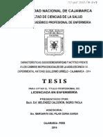 T 305.235 M519 2014.pdf