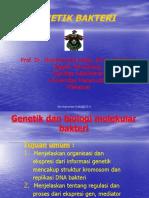 Genetik bakteri