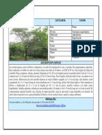 2doAporte_Trupillo.docx