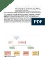 SIstem saraf review.docx