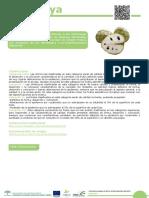 Manual Chirimoya