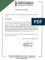 Constancia Especialista Diseño Agua Potable Nvo Ch.