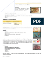 Tema 8 Dpr Bases Proteticas