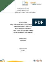 Informe Practica 3 Fisicoquimica