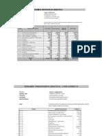Presupuesto_analítico