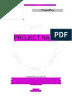 010 Project Plan[1]