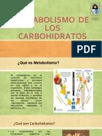 Metabolismo de Los Carbohidratos Expo