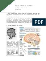 Cerebro No16