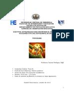 Programa-Electiva-EPDSAEB-2014 (1).pdf