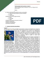 Plantas2.pdf