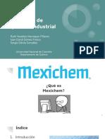 Quimica industrial presentación  (2)