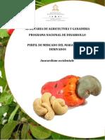 PERFIL-DE-MERCADO-DEL-MARANON-Y-SUS-DERIVADOS.docx