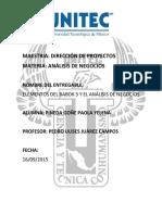 Reporte_PINEDAPAOLA_BA.docx