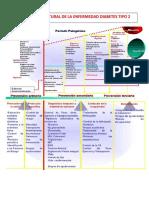 Diabetes t2 Historia Natural de La Enfermedad