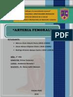 arteria-femoral.docx