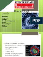 VIH Fisiopatología