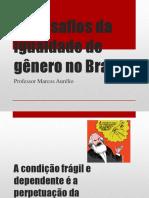 Os Desafios Da Igualdade de Gênero No Brasil