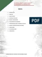 informe-limite-plastico-y-liquido.docx