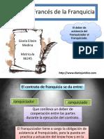 Derecho Francés de La Franquicia