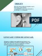 segunda parte lenguaje-xiomara.pptx