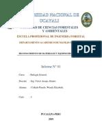 wendy informe 1.docx