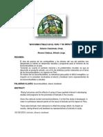 Biocombustibles en El Peru (2)