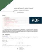 Matrices Invertibles y Elementos de Algebra Matricial