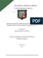 tesis rabbanito.pdf