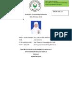 CBR Geologi dan Geomorfologi Indonesia.docx