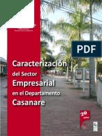 Caracterizacion Del Sector Empresarial en Casanare