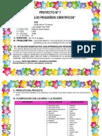 7 PEQUEÑOS CIENTIFICOS proyecto las elecciones 2018 (Autoguardado).docx