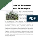 276110805-actividades-economicas-de-los-mayas-2014-docx.docx