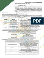Configuración Interna Del SNC y Diencefalo