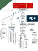 Mapa Conceptual Texto Expositivo