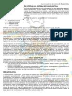 Configuracion Externa del S.N.C.pdf