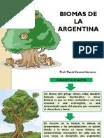 827527861.Biomas de La Argentina