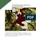 El Departamento Del Huila Sigue Liderando La Producción De Café En Colombia.docx