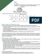 Modelos Atómicos y Estructura Atómica 5to Sec.
