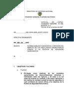 Directiva No. 300-28 Del 20 de Noviembre de 2007
