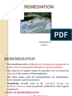 Bioremediation 141123233153 Conversion Gate01
