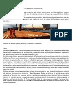 Delfino global..docx