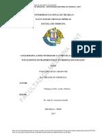 VillanuevaPolo_C.pdf