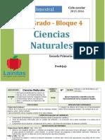 Plan 6to Grado - Bloque 4 Ciencias Naturales (2015-2016).doc