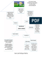 Actividad 4 Mapa Mental Registro de Cuentas Contables
