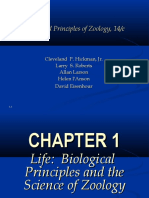 zoologyintroduction-120803004130-phpapp02