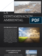 La Contaminación Ambiental Ing Civil